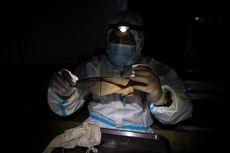 Ilmuwan Berburu Virus Kelelawar di Hutan dan Gua Filipina, Untuk Apa?