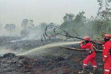 Padamkan Karhutla di Bengkalis Riau, Petugas Harus Terobos Hutan Menuju Lokasi Kebakaran