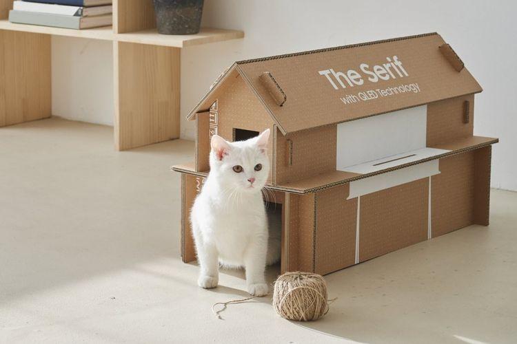 Kurangi Limbah Samsung Desain Kardus Rumah Kucing Untuk Produk Tv
