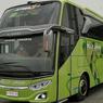 Bus Baru PO Muji Jaya Putra Mandiri Pakai Kursi Spesial