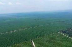 Cegah Karhutla, Petugas Patroli Pakai Helikopter di Rokan Hulu Riau