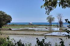 Wisata Flores, Senja di Pantai Borong dan Nangalanang Manggarai Timur