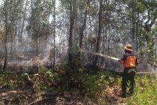 Kebakaran Lahan Terus Terjadi di Palangkaraya