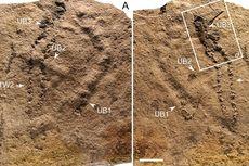 Jejak Kaki Berusia 120.000 Tahun Ditemukan di Arab Saudi, seperti Apa Persisnya?