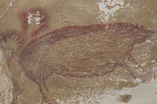 Lukisan Hewan Tertua di Dunia Ditemukan di Sulawesi Selatan, Diperkirakan Berusia 45.500 Tahun