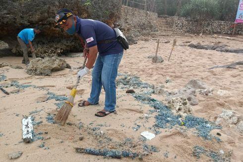 Pantai Selatan Gunungkidul Dipenuhi Ubur-ubur, Puluhan Wisatawan Tersengat