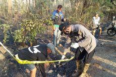 Polisi Temukan Rambut pada Tengkorak Kepala Manusia yang Ditemukan di Lokasi Kebakaran Hutan Baluran