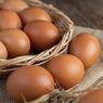 Harga Telur Ayam Diproyeksi Tetap Tinggi Hingga 2021