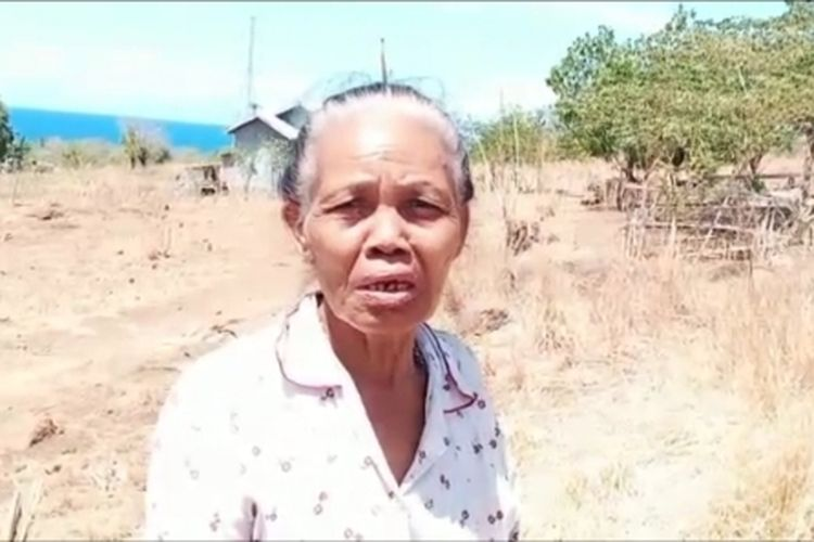 Foto : Theresia Toji, warga Kelurahan Hewuli Kecamatan Kecamatan Alok Barat, Kabupaten Sikka, NTT, saat diwawancara media, Minggu (12/9/2020).
