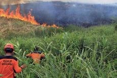 Komisi IV Surati Presiden agar Tambah Anggaran untuk Antisipasi Kebakaran Hutan