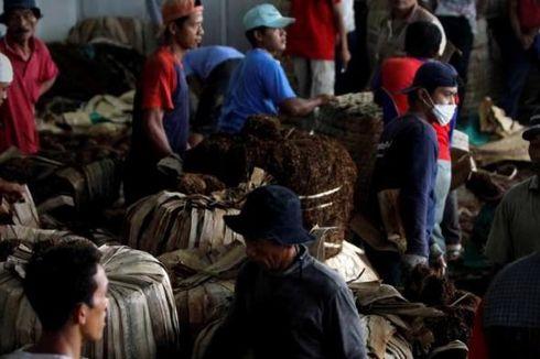 Kemenperin: Industri Hasil Tembakau Serap 5,9 Juta Tenaga Kerja