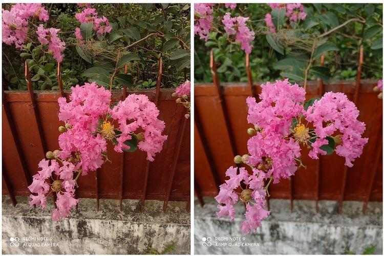 Perbandingan foto Redmi Note 9 menggunakan mode 48 MP (kanan) dan mode normal dengan zoom 1x (kiri).