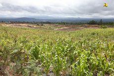 Rapat dengan Kementan, Komisi IV DPR Soroti Realokasi Anggaran dan Proyek Food Estate di Kalteng