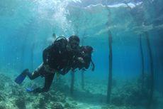 Menikmati Eksotis Pesona Bawah Laut Kolaka Bersama Terios