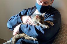 Hilang 15 Tahun, Kucing Ini Akhirnya Kembali ke Pelukan Majikannya