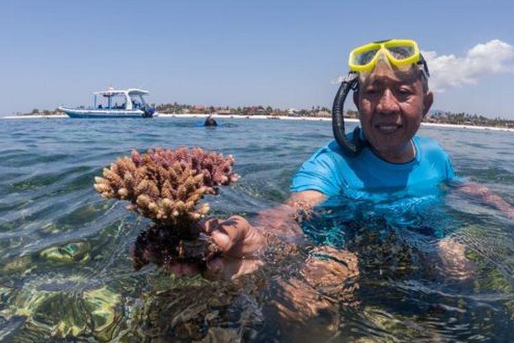 Agus Joko Supriyatno membudidayakan terumbu karang sebelum ekspor dilarang tahun 2018.
