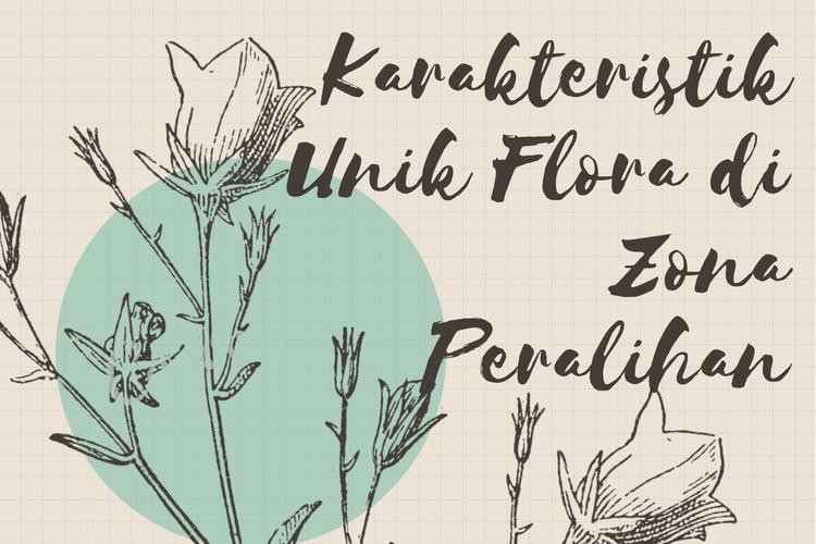 Ilustrasi karkateristik flora di zona peralihan