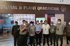 Cegah Penyebaran Virus Corona dari Hewan, Kementerian Pertanian Gelar Inspeksi di Soekarno-Hatta
