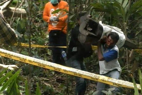 Kades: Pembunuh Gajah di Aceh Bukan Warga Setempat