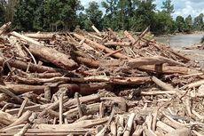 Walhi: Banjir Bandang di Luwu Utara Disebabkan Pengalihan Fungsi Hutan