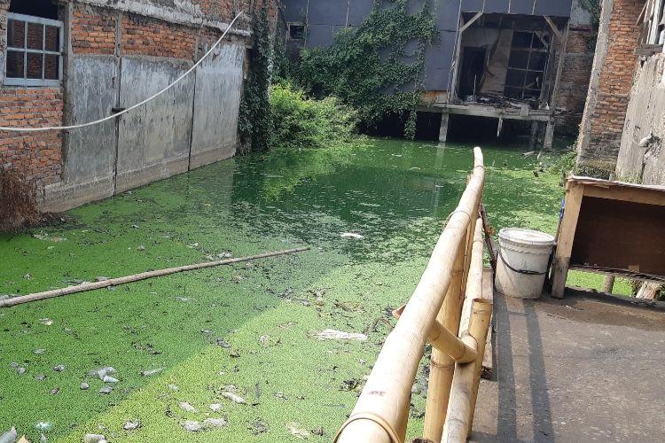 Kolam air yang terdapat di sela-sela rumah di Kampung Apung, Kapuk, Cengkareng, Jakarta Barat.