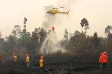 BNPB Sebut Hujan yang Belum Rata Sulitkan Pemadaman Karhutla