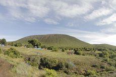 Apa Saja Syarat dan Aturan Mendaki Gunung Dempo yang Legal?