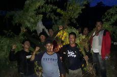 TNI Temukan Ladang Ganja Seluas 1 Hektare di Empat Lawang