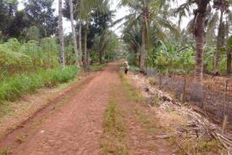 Jalan menuju rumah korban, jalan menuju lokasi bebatuan diselimuti tanah merah dan sisi kiri kanan jalan terdapat perkebunan singkong dan coklat.