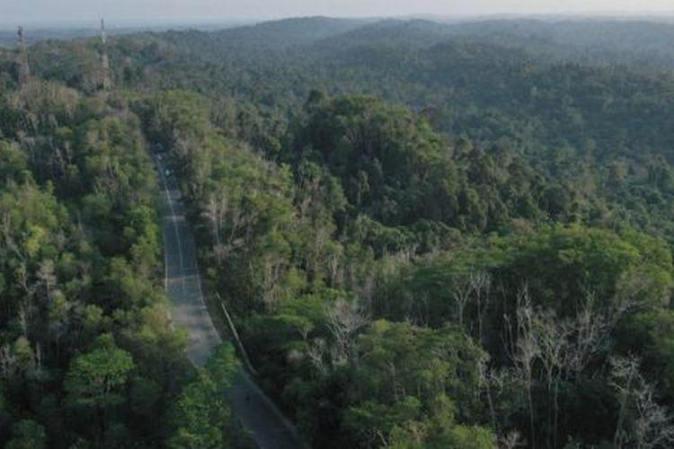 Taman Hutan Raya Bukit Soeharto di Kutai Kertanegara merupakan salah satu hutan di wilayah ibu kota baru.