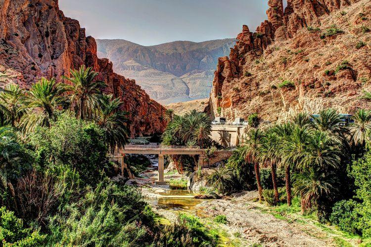 Ilustrasi Algeria - Kota Biskra.
