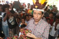Syukuran Jokowi Jadi Presiden, Warga Adat Papua Potong 50 Babi