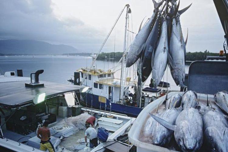 Ilustrasi penangkapan ikan