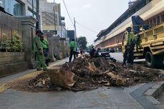 Fraksi PDI-P Protes Penebangan Pohon di Trotoar karena Bertentangan dengan UU Lingkungan Hidup