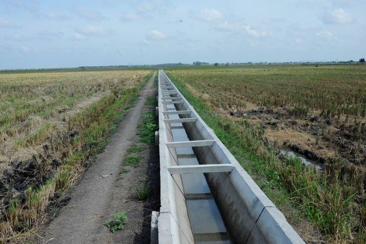 Peran P3A Optimalkan Air Irigasi Jadi Kunci Tingkatkan Produktivitas