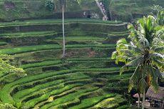 2 Tempat Wisata di Bali Tawarkan Pengalaman Terbaik di Dunia, Mana Saja?