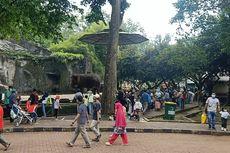 Langgar Aturan Ganjil Genap di Ragunan, Wisatawan Harus Rela Putar Balik