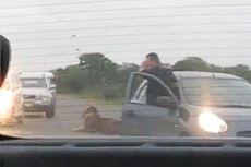 Keluar dari Mobil, Turis Ini Rekam Singa di Taman Nasional Afrika Selatan