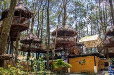 Harga Tiket Kopeng Treetop Semarang Tahun 2021, Cuma Buka Weekend dan Hari Libur