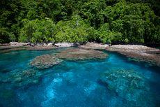 Kepulauan Solomon Laporkan Kasus Pertama Virus Corona