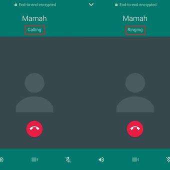 Status calling dan ringing di WhatsApp Voice Call.