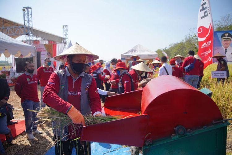 Wali Kota Madiun, Maidi memotong padi pada kegiatan memanen padi  di lahan demplot aplikasi pupuk phonska plus milik kelompok tani Dadi Makmur di area persawahan Kelurahan Winongo, Kecamatan Manguharjo, Rabu (29/7/2020).