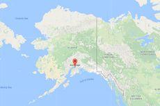Ular Piton 5 Meter Lepas, Warga di Anchorage Ketakutan