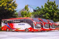 Jangan Salah, Ini Bedanya Bus Besar dengan Bus Maxi
