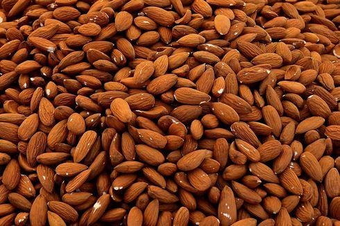 Mengenali Beragam Manfaat Kesehatan dari Kacang Almond