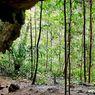 Alat-alat Batu di Goa Maluku Utara Beri Petunjuk Manusia Pelintas Pulau