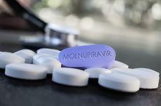 3 Perusahaan Farmasi Indonesia Siap Impor Molnupiravir Jika EUA Terbit