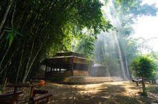Boon Pring, Tempat Wisata di Area Hutan Bambu Andalan Desa Wisata Sanankerto