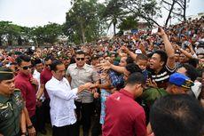 Jokowi Luncurkan Program Peremajaan Sawit Rakyat di Riau