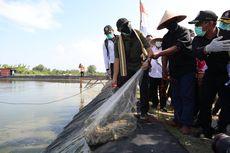 Menkop UKM Dorong Pemberdayaan Tambak Udang Melalui Koperasi dan Kemitraan
